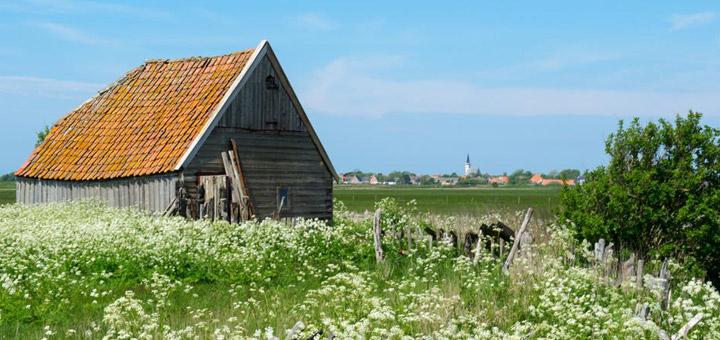 texel-vakantie-verhuur-schapenboet-den-hoorn